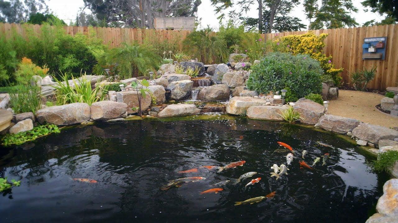 maxresdefault6171856313937087981 - Как создать пруд с рыбами на даче